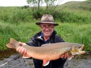 Leopard Rainbow Trout – Arctic Char – Dolly Varden – Giant Kings, Chum, Pink, Sockeye and Silver Salmon – Grayling and Lake Trout